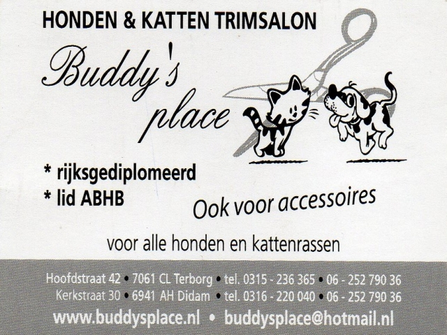 buddy place